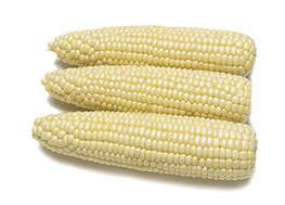 Devotion Corn - Sold by Dozen