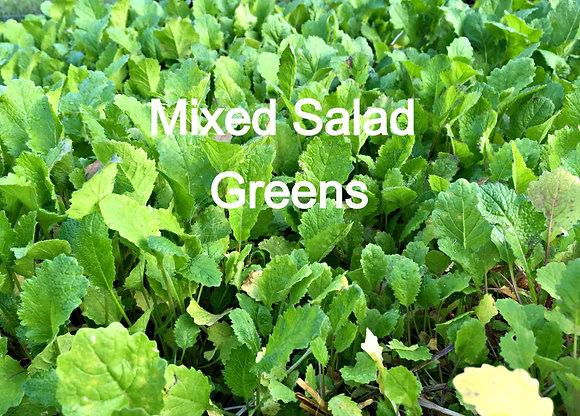 Mixed Salad Greens Case