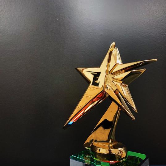 Excellence_Shining_Stellar_edited.jpg