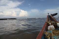 Boat rides with fishermen