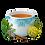 Thumbnail: SOLLIEVO E VIGORE GR 30 - Yogi Tea