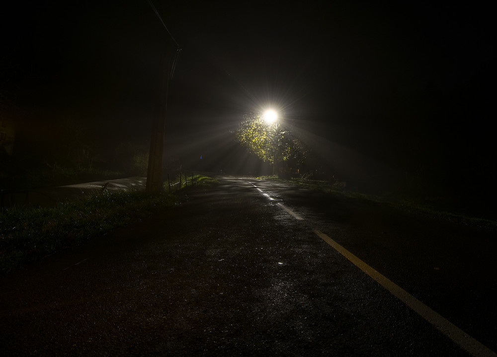 Foggy Night.jpg