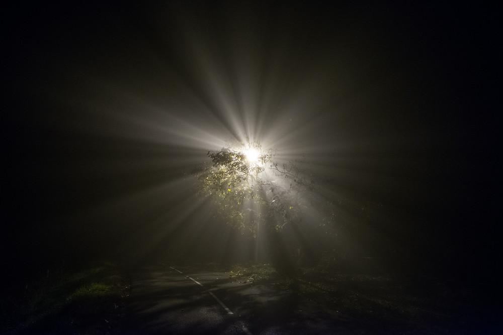 Foggy Night-6.jpg