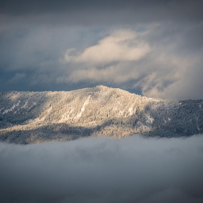 Snow'n fog