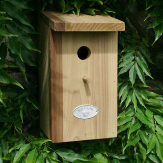 Gloucestershire nest box.jpg