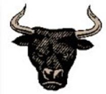 boğasymbol.png