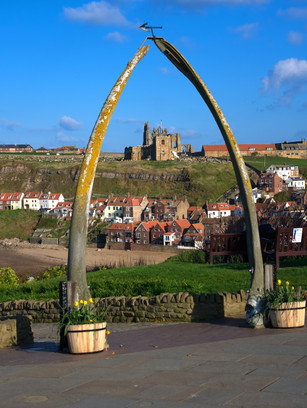 The Whale Bones Whitby
