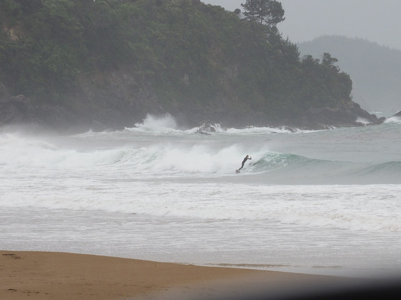 Surfing at Whangarei Heads