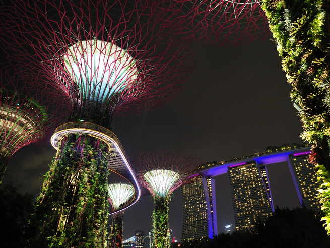 Gardens in the Bay, Singapore at night