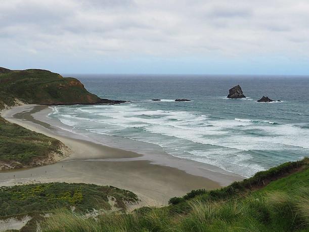 Beach on Otago Peninsular