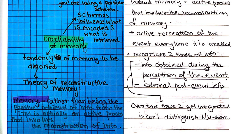 Study Notes: Topics 2 & 3 IB Psychology SL