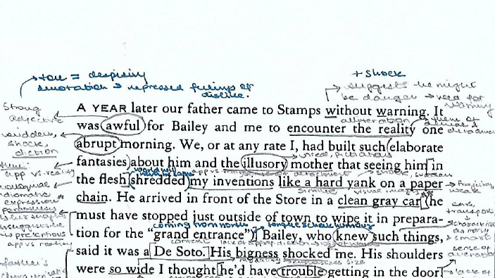 I Know Why the Caged Bird Sings: Annotated Key Chapters