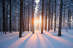 Winter-of-Solitude-1.jpg