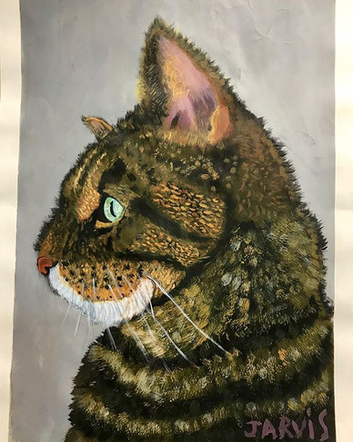 Gorgeous cat portrait by 8 year old Jarv