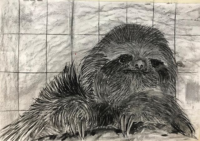 So hairy! 🌟 preliminary drawing for pai
