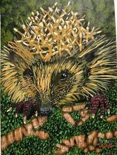 Very proud of 6 year old Bailey's hedgeh