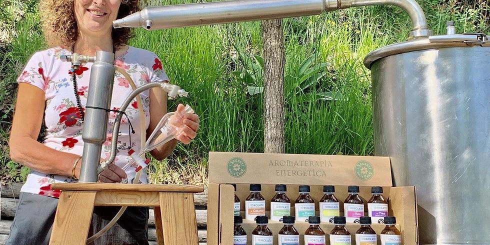 Distillazione delle erbe e minicorso di aromaterapia