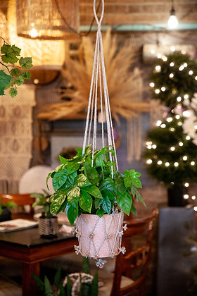 "Macramé Plant Hanger (Fits 6""-8"" Pot)"