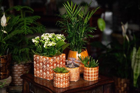 5-Piece Orange Container Set