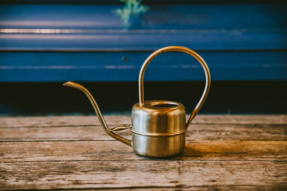 Mini Brushed Gold Watering Can