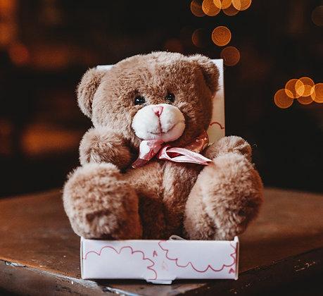 Teddy Bear Plush - Boo Boo