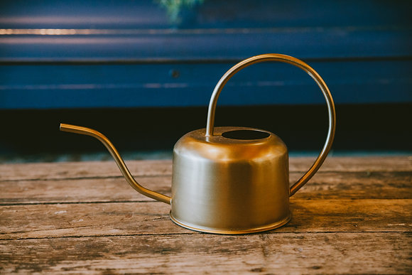 Brushed Gold Watering Cans