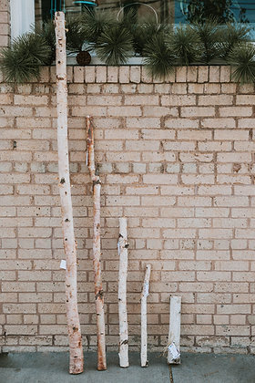Birch Poles - Assorted Sizes