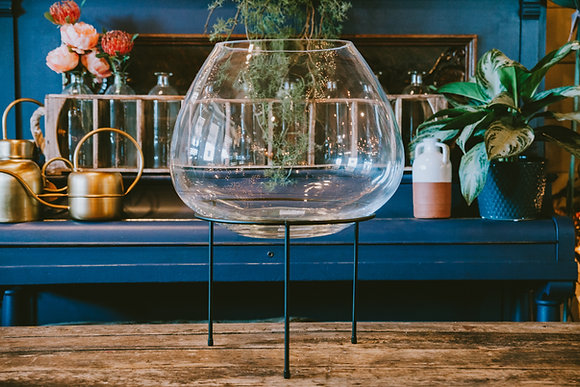 Snifter-Shaped Terrarium (Extra Large)