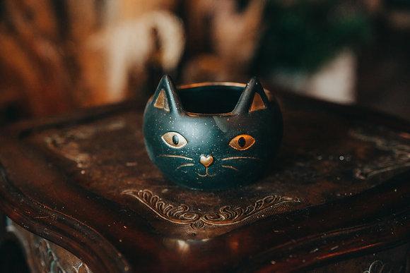 Black Cat Container