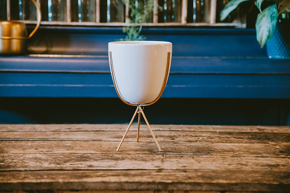 White & Gold Pot with Stand