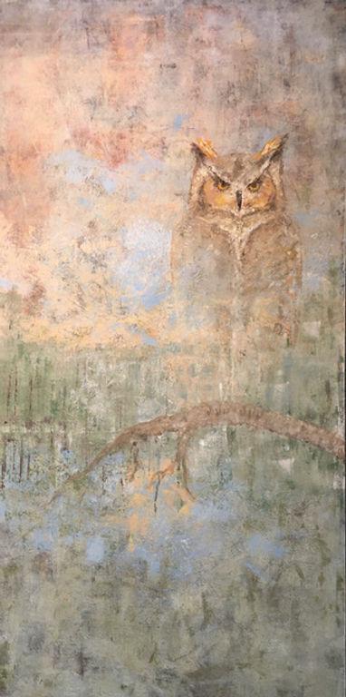 new owl.jpeg