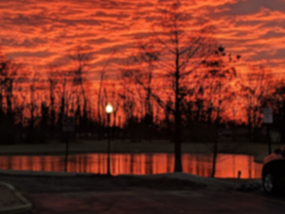 pond at sunrise gretchen.jpg