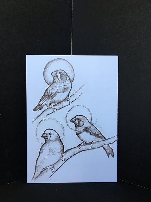 """Finches"" 5x7 Art Print"