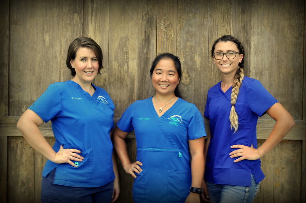 Veterinary uniforms scrubs branding colors