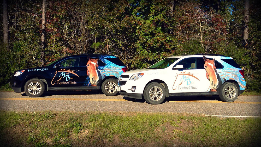 veterinary equine car wraps