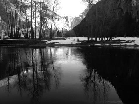 Brad S. Wise - American Landscape