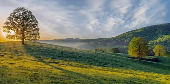 Fannin Pasture Sunrise