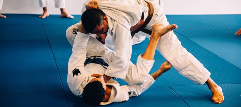 half guard brown belt.jpg