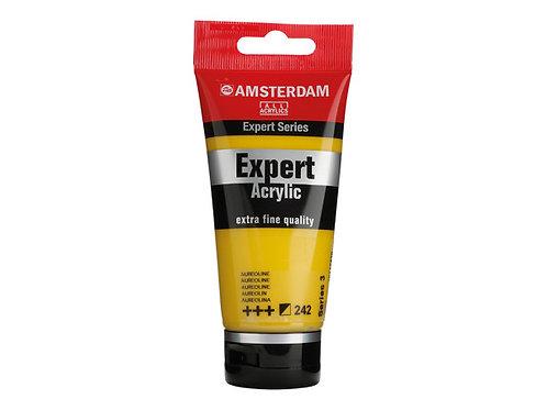Amsterdam Expert 75ml - Aureoline