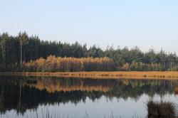 bakkeveen herfst