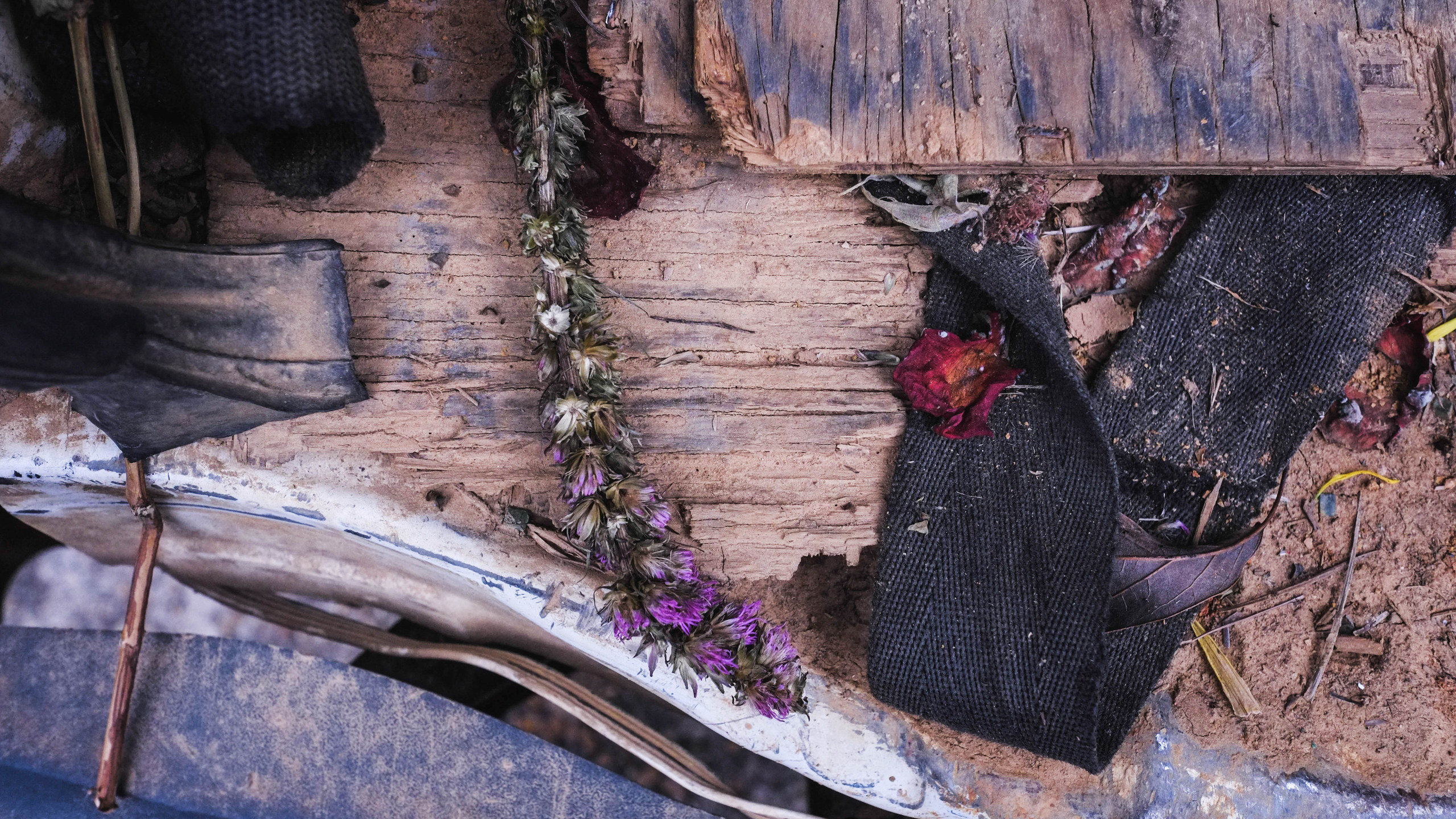 Dried funeral flowers found in the back of the van amid the tent poles and chairs.