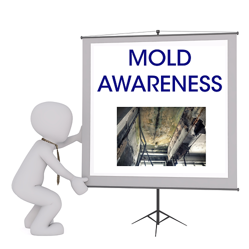 Mold Training Long Island