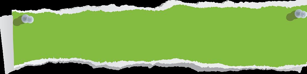 CNS Environmental Services