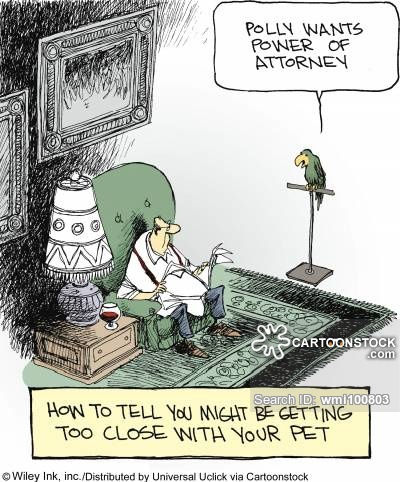 law-order-power_of_attorney-lawyer-poa-p