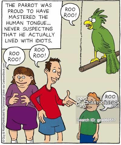 animals-intelligent-parrot-idiot-iq-talk