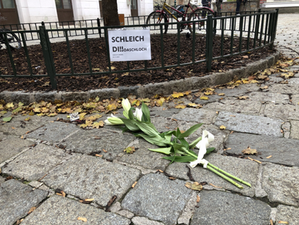 Weekly update: Vienna mourns the victims of tragic terror attack