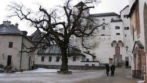 Weekly update: four-week lockdown introduced in Austria