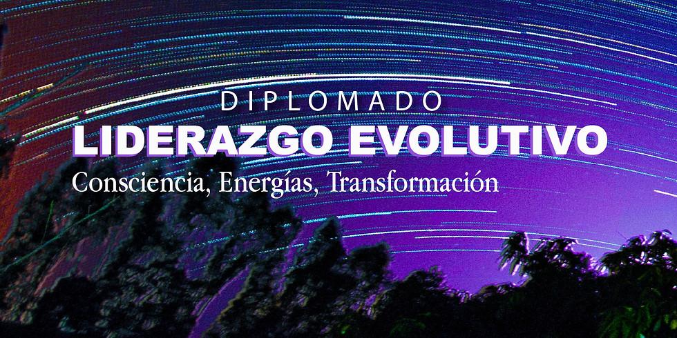 Diplomado Liderazgo Evolutivo