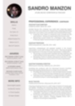 Sandro Manzon Composer CV 2020 GENT.jpeg