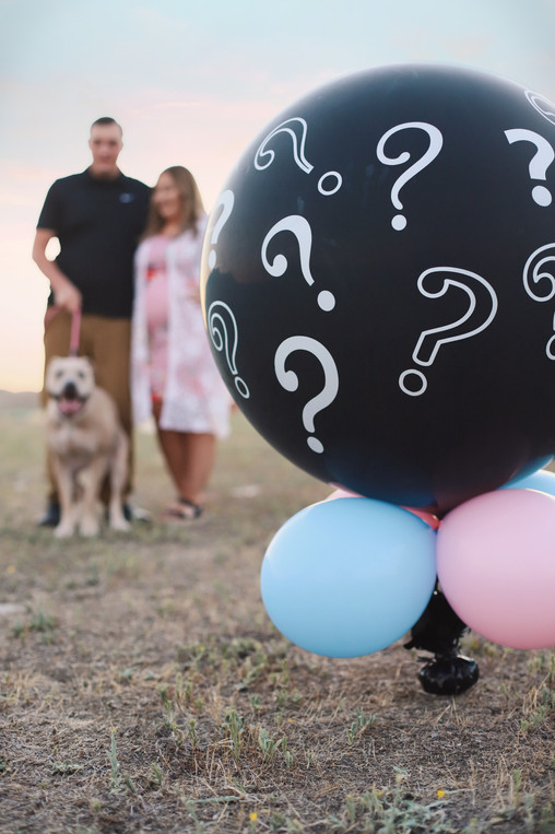 Gender Reveal with furry sister!